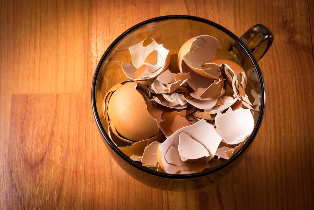 eggshells in a glass mug